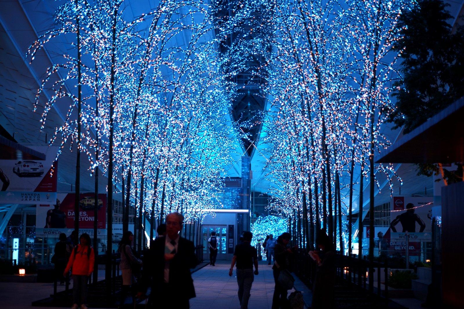 LEDのイルミネーションが輝く羽田空港